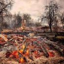 Последствия весенних пожаров в Житомирский области оценивают в миллиард