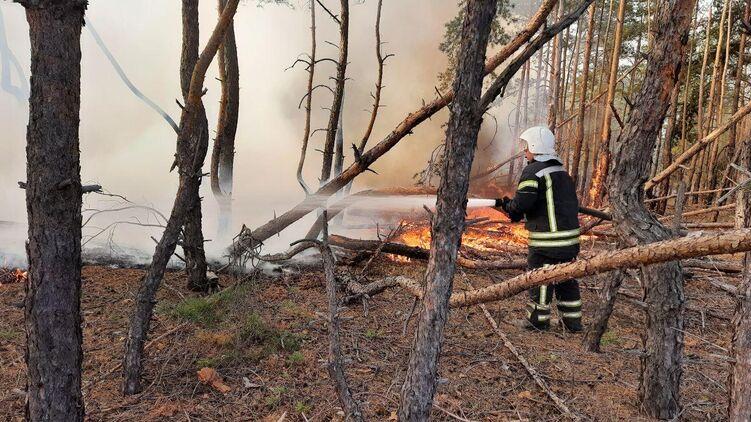 В  Луганской области продолжается тушение четырех основных очагов возгорания