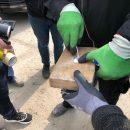 Партию наркотиков обнаружили в морском порту Одессы
