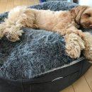 Мягкие лежанки и лежаки диваны для собак