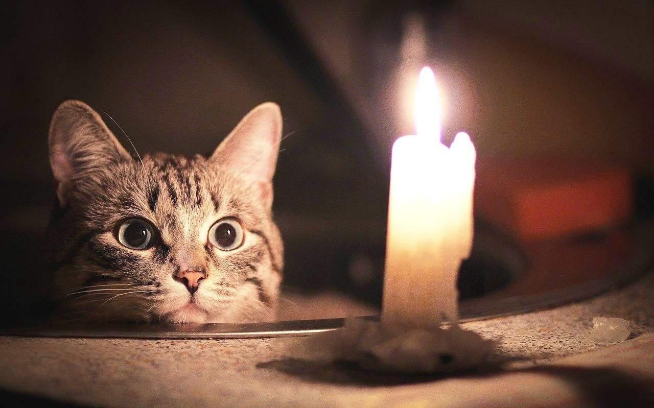 Из-за непогоды без света остались около 270 городов Украины - ГСЧС