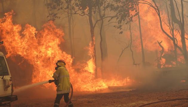 В Австралии вновь вспыхнули масштабные лесные пожары (ВИДЕО)